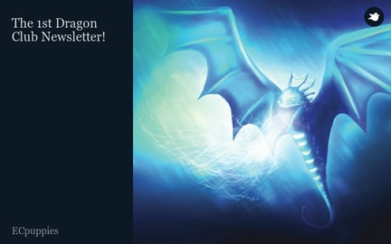 The 1st Dragon Club Newsletter!