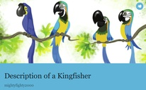 Description of a Kingfisher