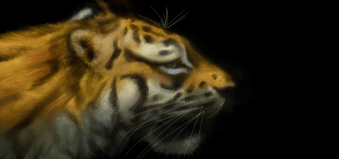 Tiger Rising By: Kate DiCamillo by tpadfield - Storybird