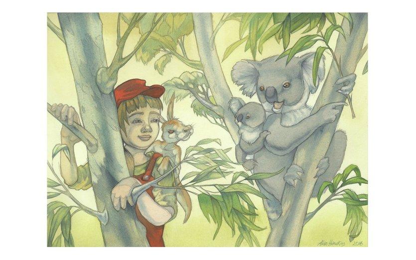 - adventure, animals, cute, kangaroo, koala, nature, wildlife
