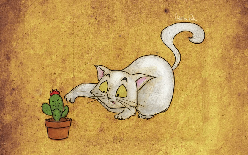 Cat with cactus
