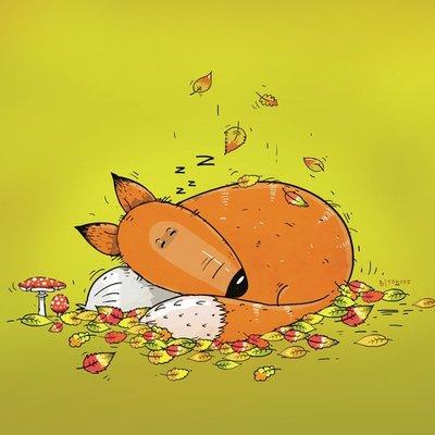 Fox is sleeping