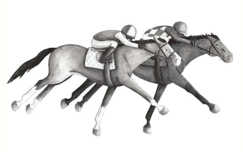 - gallop, horse, horses, ponies, race, racehorses, run