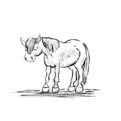 Pony Naps