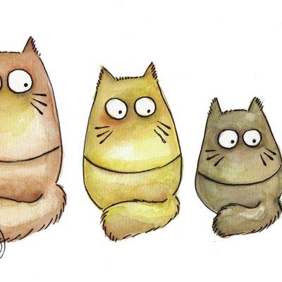 Cat-roshkas