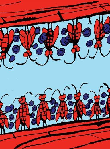 twenty cicadas