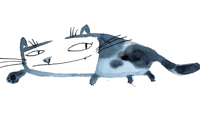 - adorable, animal, aw, blue, cartoon, cat, coy