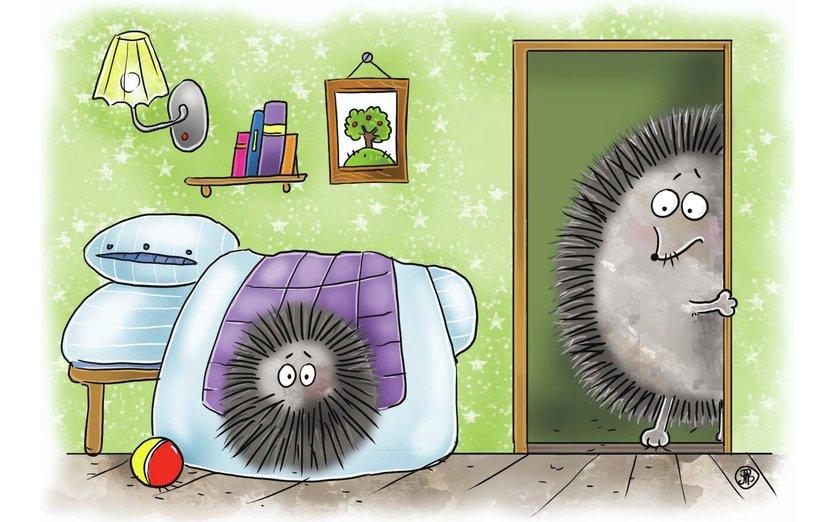 Hedgehogs 4