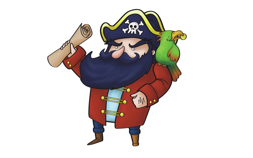 The pirate captain is ready to go and find the long lost treasure! - adorable, animal, bird, blackbeard, blue, brightcolored, brightcolors
