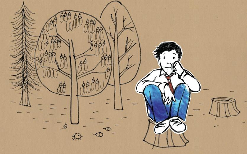 - black, blue, boy, branch, branches, brown, forest