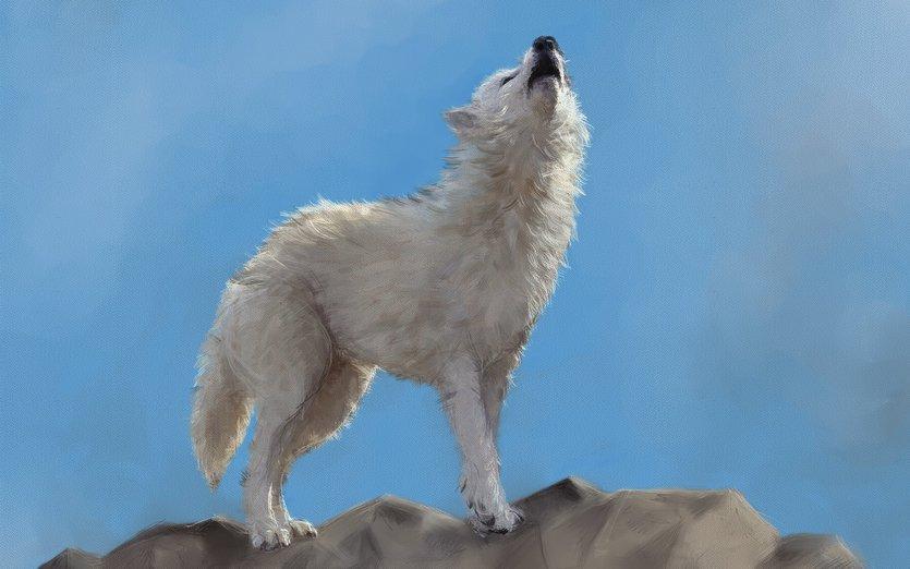 howling wolf by inkymum on storybird