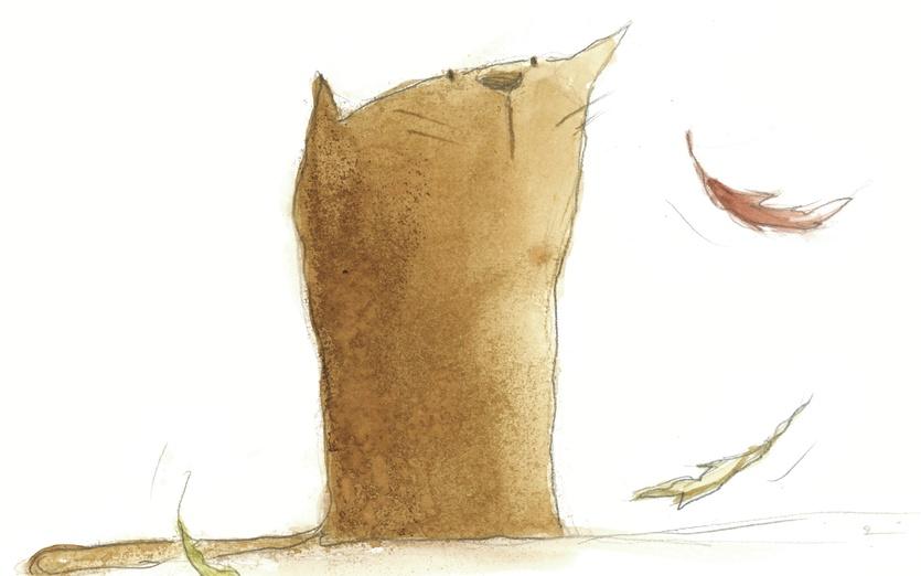 - adorable, attention, autumn, brown, cartoon, cartoony, cat