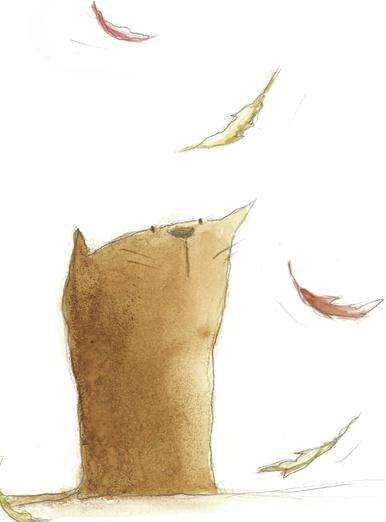 Cat and autumn