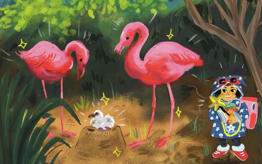- birds, family, flamingo, forest, magic, nature, witch