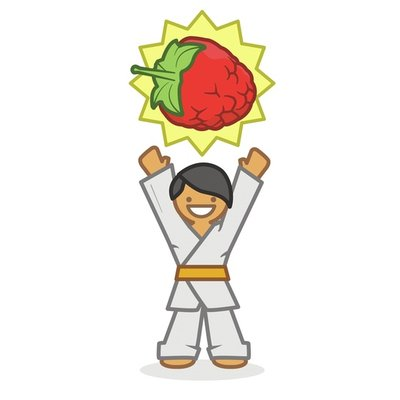 Judoka raspberry winner