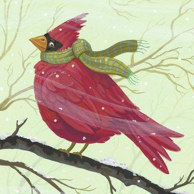 Cardinal Scarf