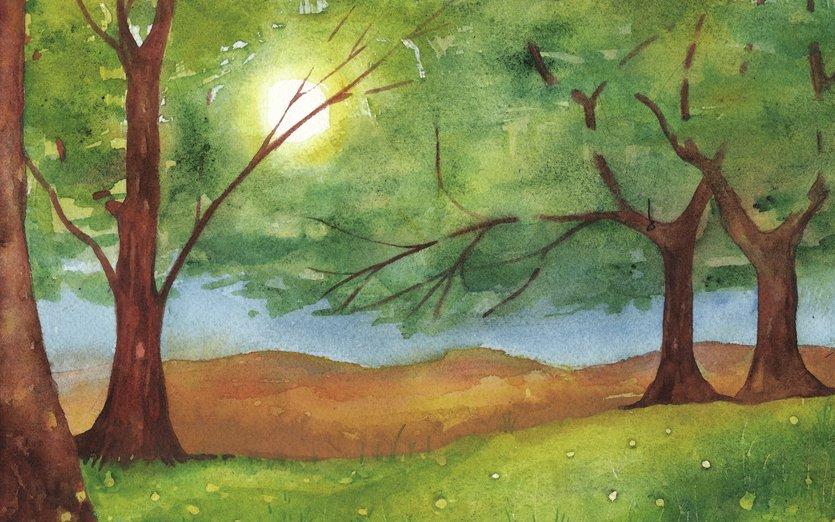 Sunrise in the pixie's meadow - beauty, blue, dawn, fairy, land, landscape, meadow