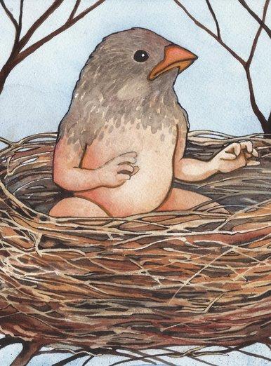 Bird Baby