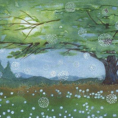 Midnight Meadow