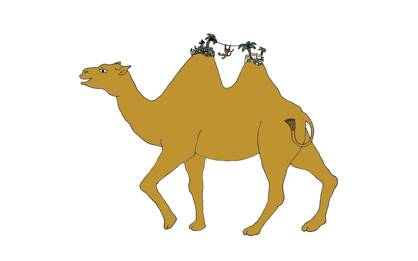 - animal, brown, camel, cartoon, cartoony, colored, colorful