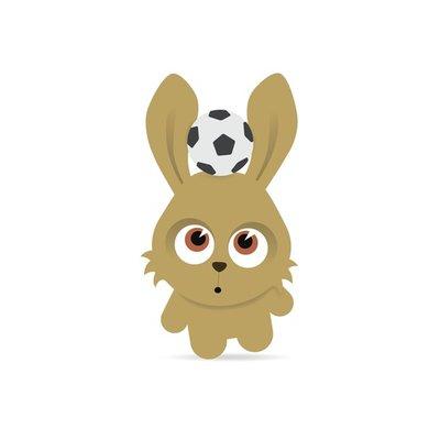 Football Bunny