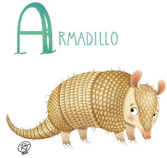 - alphabet, animals, armadillo, colours, educational