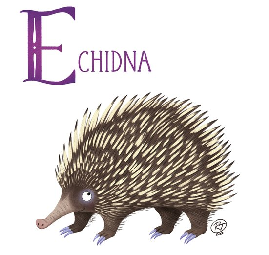 - alphabet, animals, colours, echidna, educational