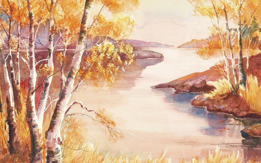 - area, autumn, bay, birch, boundary, bwca, camping