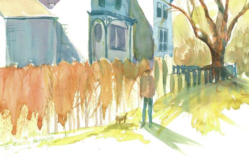- cat, dog, fall, neighborhood, winter