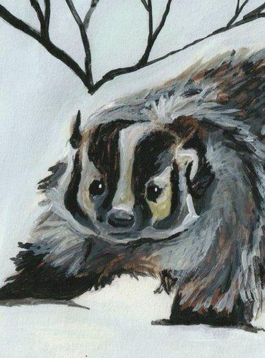 Winter Animals-Badger