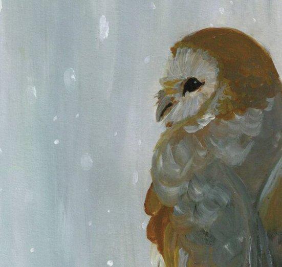 - animals, barn, blizzard, falling, owl, snow, snowflakes