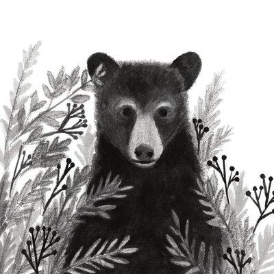 Fern Bear