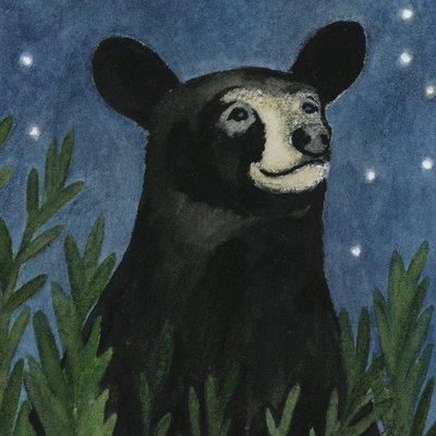 Gazing Black Bear