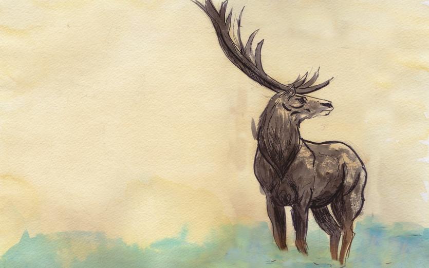 - adorable, animal, beige, black, blue, brown, cartoon