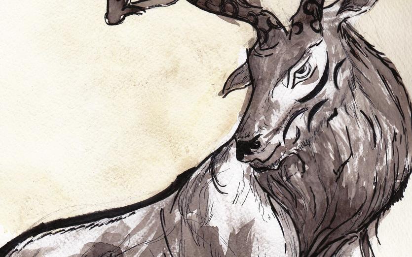 - angry, animal, art, ash, black, deer, detailed