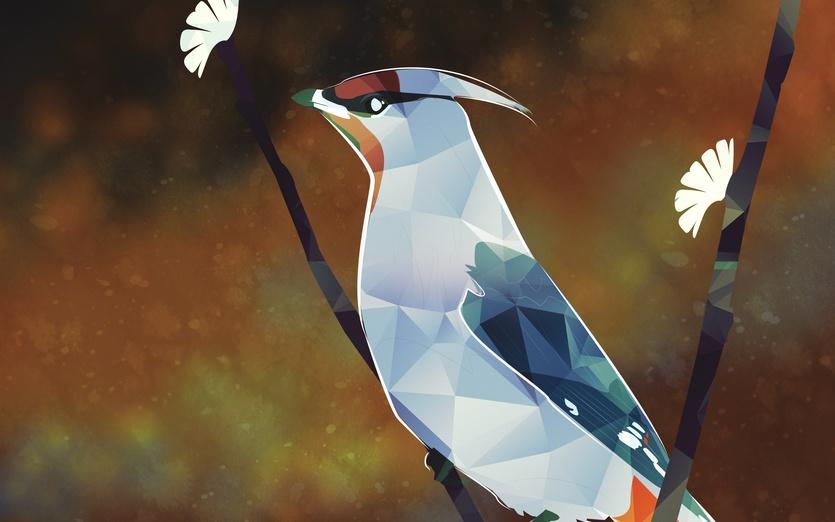 - adorable, animal, art, beautiful, bird, blaze, blossoms