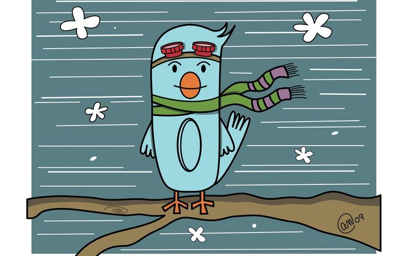 A bird dreams of flight. - adorable, bird, blue, branch, breezy, brightcolored, brightcolors
