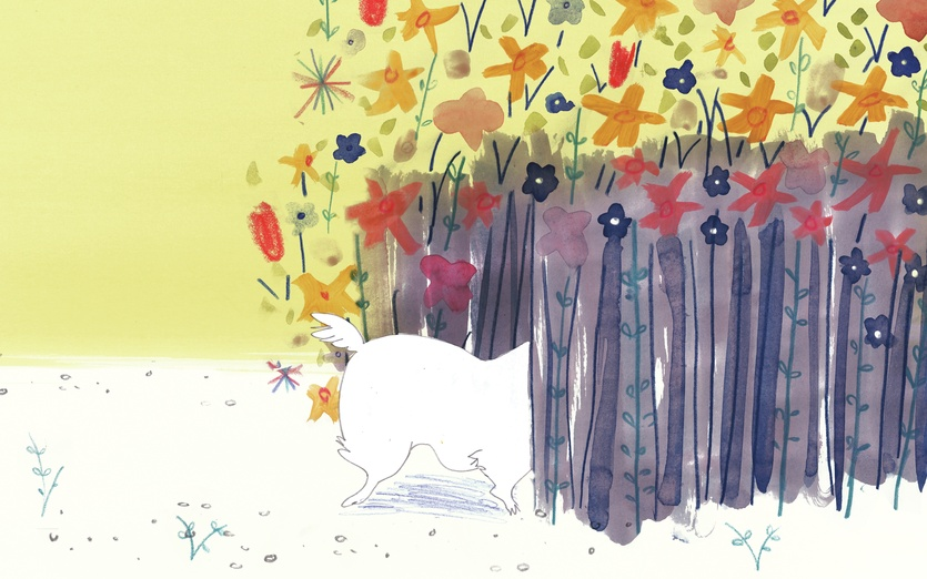 - adorable, cartoon, cartoony, cat, character, colored, colorful