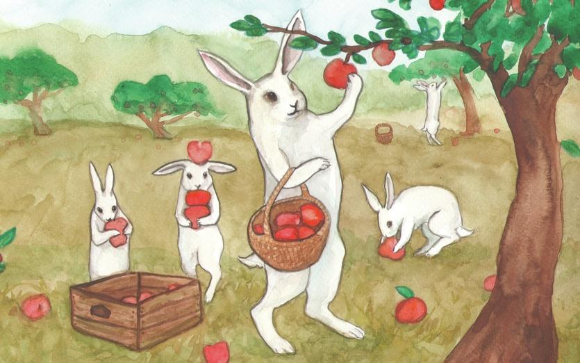 - adorable, apple, apples, autumn, basket, blue, bunnies