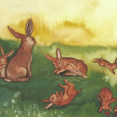 Eight rabbits
