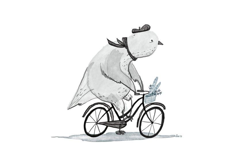 - baguette, beret, bicycle, bike, bird, cute, flowers