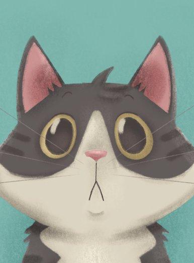 Tigro the cat