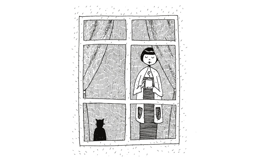 - black, cat, coffee, cold, cosy, curtains, detailed