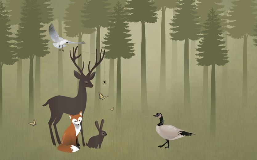- adorable, animal, animals, bird, brightcolored, brightcolors, brown