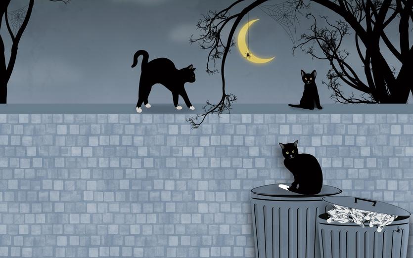 - adorable, animal, animals, bin, bins, black, blue
