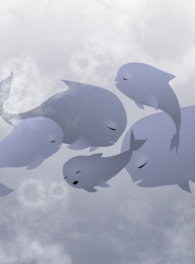 Friendly Whales