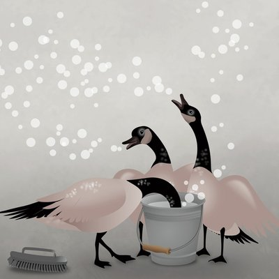 Soap Bubble Geese