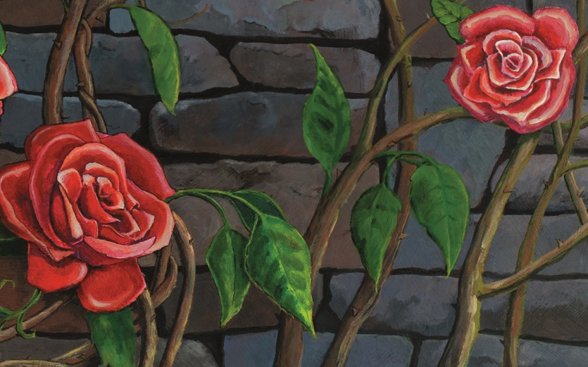 poem rose thorns by molly mcquade