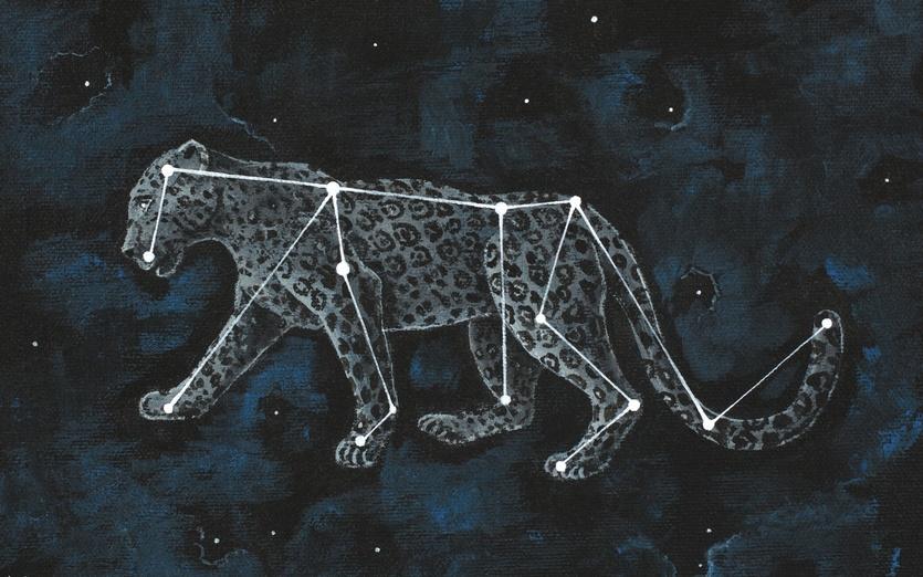 - animal, art, black, blue, cat, cheetah, clear