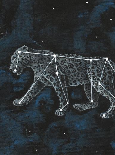 The Leopard Constellation